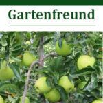 Zeitschrift Gartenfreund